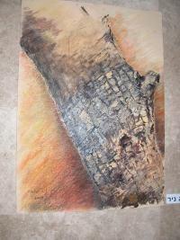 חוגי ציור רמת גן
